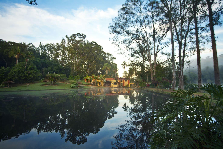 vista-da-floresta-do-lago-da-fazenda-paraiso